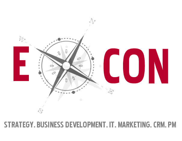 E-CON Digital Consulting